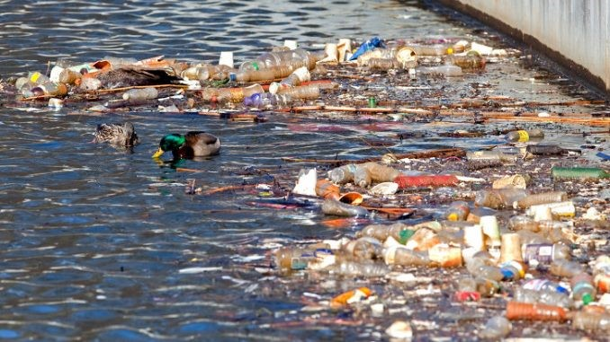Are we drinking clean water? – Water pollution and its effect on public health